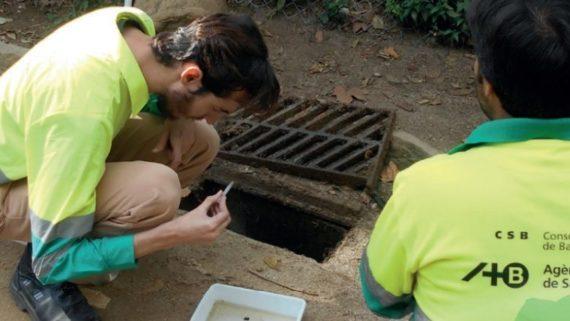 Dos operaris de l'ASPB analitzen la presència de mosquits en una mostra d'aigua