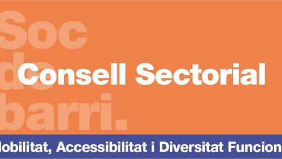 Consells Sectorials Mobilitat, Accessibilitat i Diversitat Funcional
